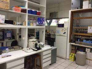 Laboratório de Histomorfologia do Tecido Ósseo.